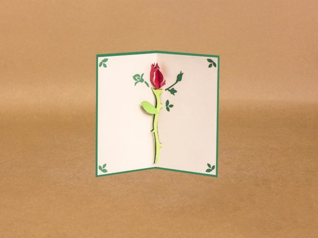 Flower Pop Up Card : The gorgeous petals with beautiful paper.